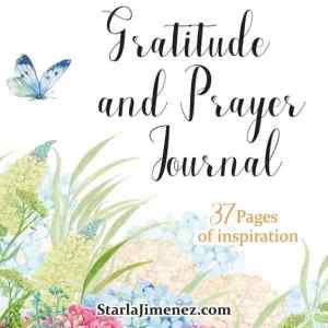 Gratitude and Prayer Journal
