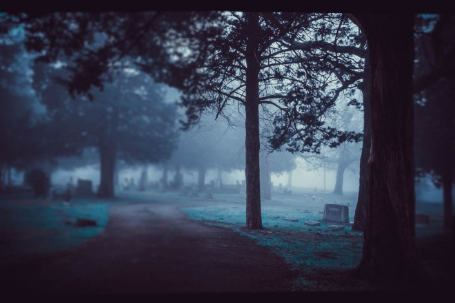 foggy_walks-2