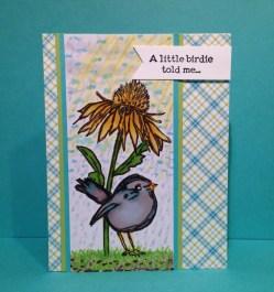A Little Birdie - Pastor Charles