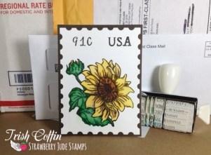 postage SJS marked