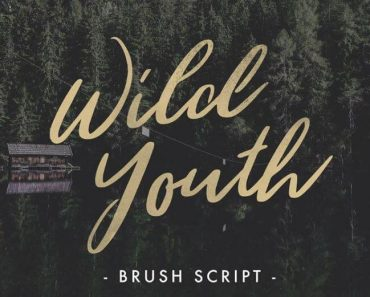 Wild Youth Font 370x297