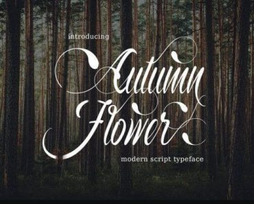 Autumn Flower Font 370x297