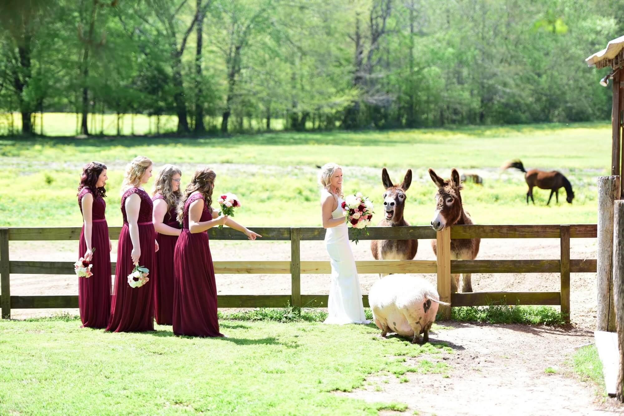 outdoor wedding Venue jackson tn