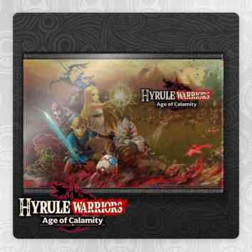 Hyrule Warriors Art Panel