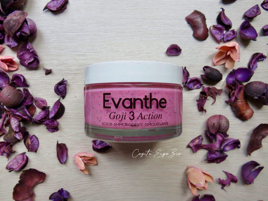 evanthe-scrub