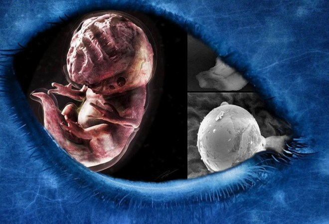 Alien seed, definition and study. A-Z index of Cognitio.