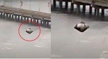 Panama city, shocking landing of a UFO!