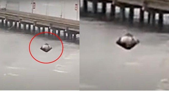 Panama city, shocking landing of a UFO!