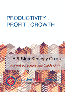 Free Business Growth Strategy eBook Download, 5 steps to productivity, profit and growth