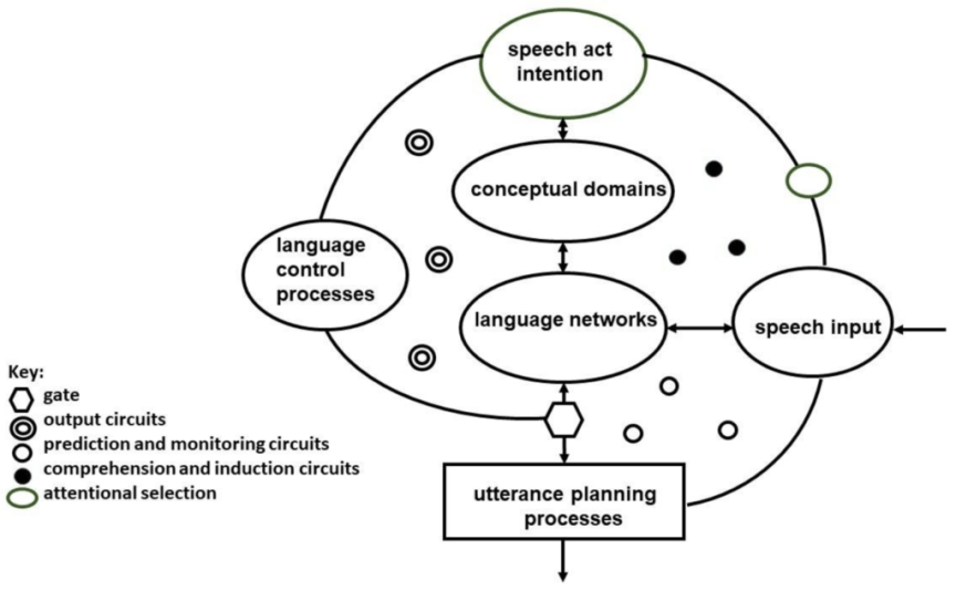 Green's extended control process model of code switching and language utterance
