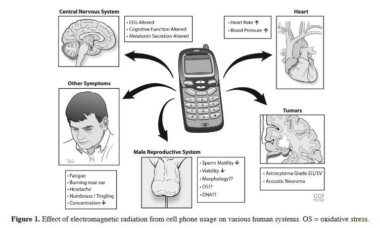 Effect of electromagnetic radiation from cell phone usage