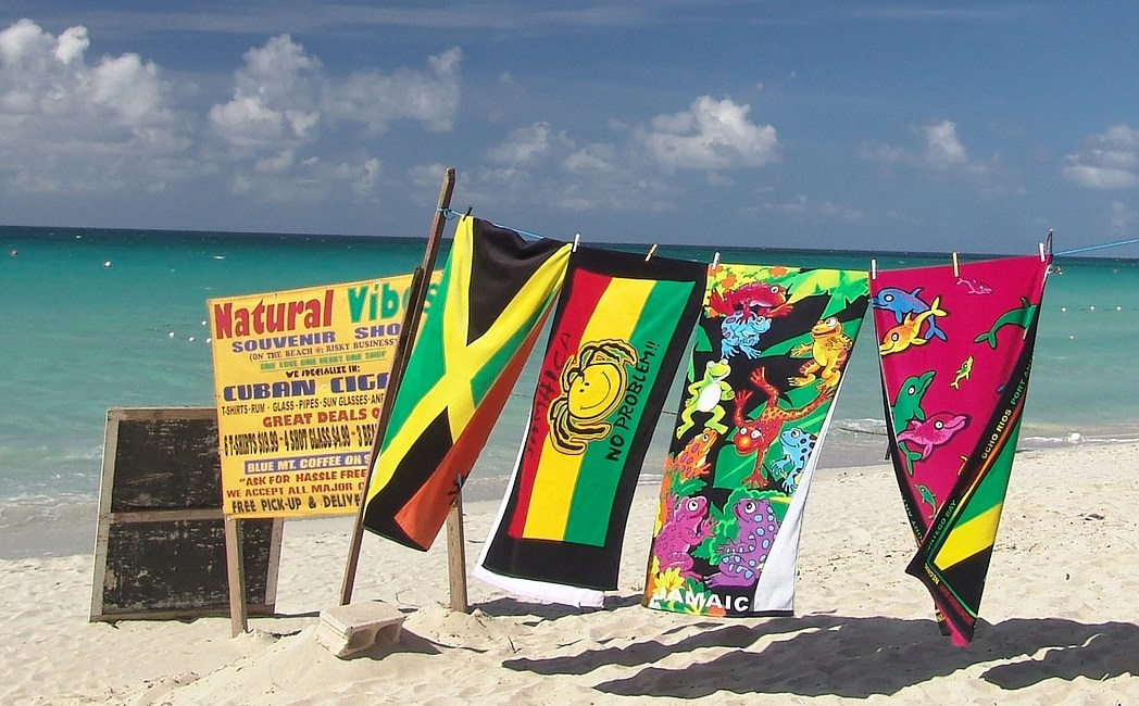 Tech Minister: Jamaican BPO Sector Must Anticipate AI Threat So It Doesn't Derail Growth (Photo credit: 3dman_eu / Pixabay)