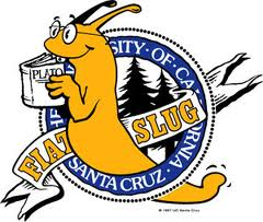 UCSC Students Receive Fake Eviction Notices
