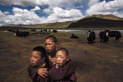 A group of young Tibetan monks huddles on a degraded pasture on the Tibetan Plateau. width=