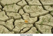 vertisol toprak ile ilgili görsel sonucu
