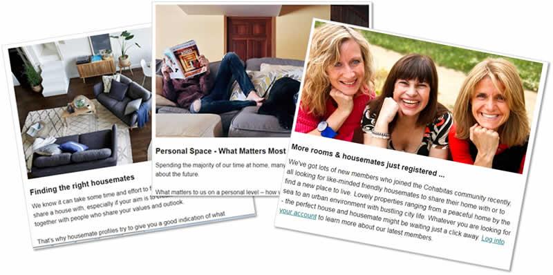 cohabitas house share newsletter