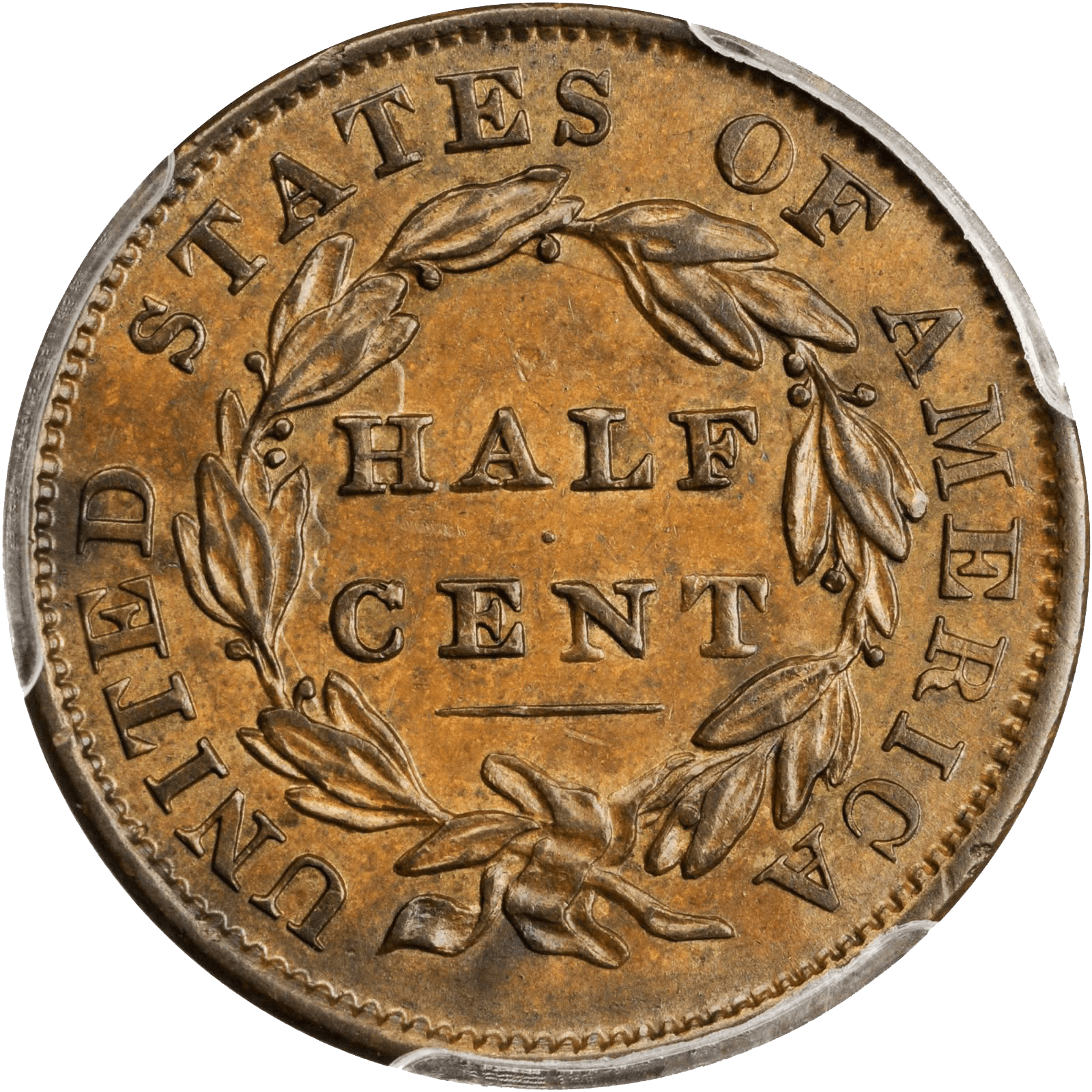 Value Of Classic Head Half Cent