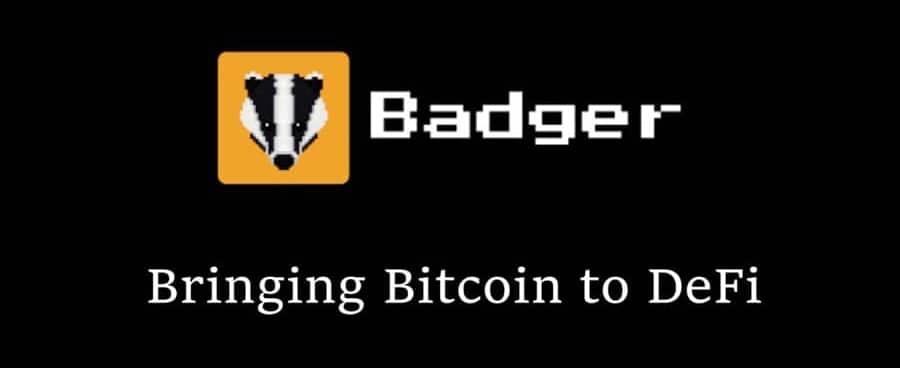 Badger Dao Logo