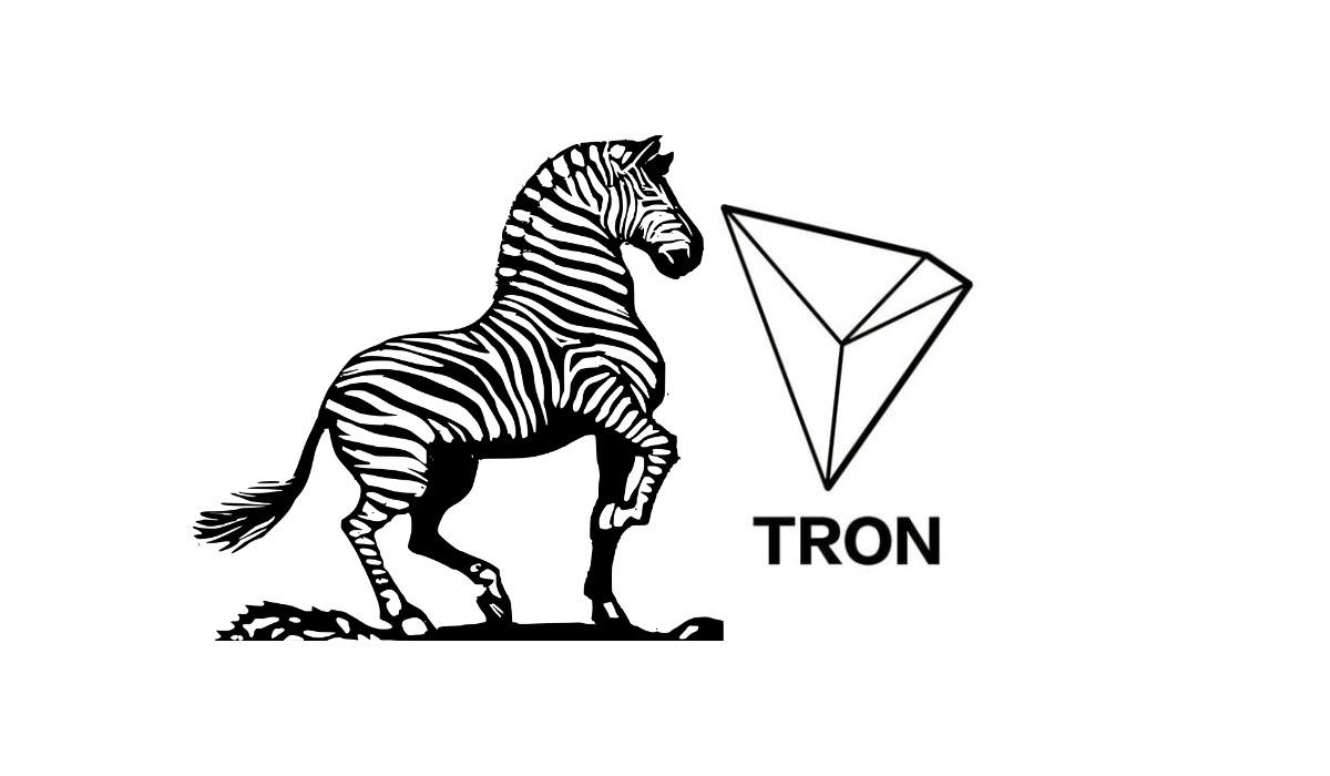 zebpay rumoured to launch tron