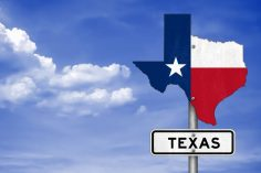 Newsweek poll shows that 37% of Texas residents want crypto payments