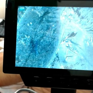 Best Microscope? My Review Of Digital Microscope Linkmicro 560X Magnifier