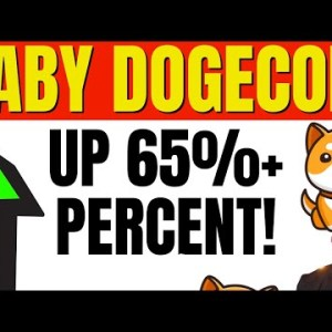 BABY DOGECOIN UP 65%! BABY DOGE COIN IS MAKING A RUN!
