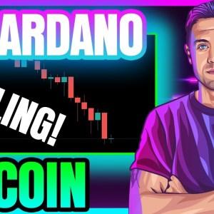 BITCOIN & CARDANO DIP AGAIN! (Will BTC & ADA Price Bounce Here?)