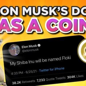 Elon Musk DOGE has a COIN?! SHIB named FLOKI?!