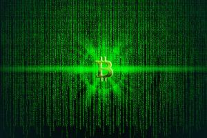 green shoots of recovery sprout for bitcoin miners report