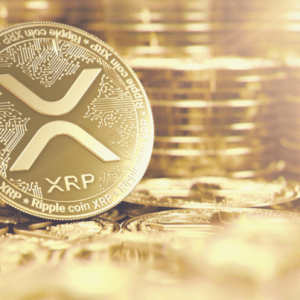 ripple whales return to push xrp prices higher