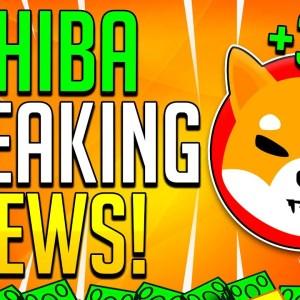SHIBA INU BREAKING NEWS! $300,000,000 HEDGE FUND PUMP INTO SHIB Token!