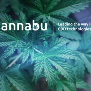 all about quannabu the cryptocurrency built for the cannabis industry