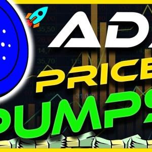 CARDANO ADA PUMPS 20% | ADA RECOVERY | ADA ANALYSIS & UPDATE | CRYPTO NEWS TODAY
