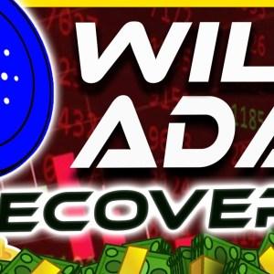 Cardano Price Falls...Will It Recover? | Cardano ADA Analysis & Update | Crypto News Today