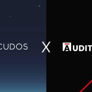 cudos partners with liquid staking platform persistence