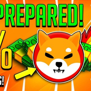 HOW 1 MILLION SHIBA INU COINS COULD PUT YOU IN THE TOP %1 IN THE FUTURE!