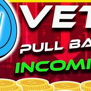 HUGE VECHAIN  BREAKDOWN?  VET Price Analysis & Update | Crypto News Today