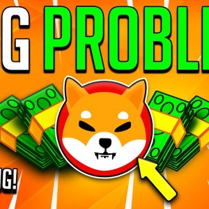 YOU WILL LOSE YOUR SHIBA INU GAINS UNLESS THIS IS FIXED! - SHIBA INU LIQUIDITY & MORE!