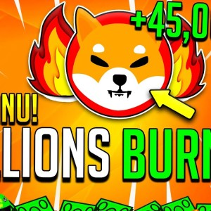 SHIBA INU COIN THIS JUST HAPPENED TODAY! EVERYTHING FINALLY CHANGES! TRILLIONS BURN! LEASH & BONE