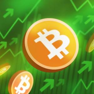 bitcoin btc holders awaiting new ath as the crypto market recovers slowly