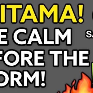 """SAITAMA INU - THIS IS """"THE CALM BEFORE THE STORM!"""" SAITAMA INU COIN!"""