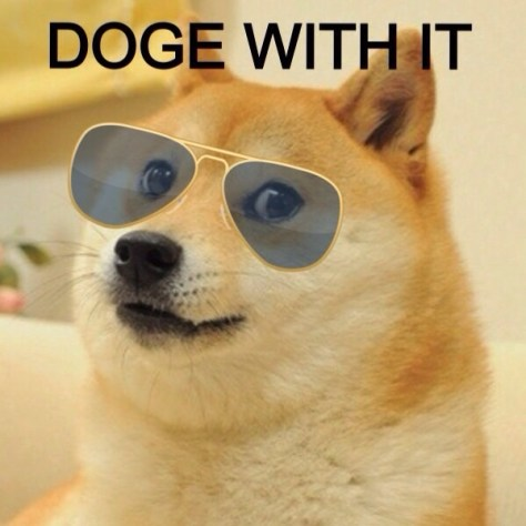doge with it