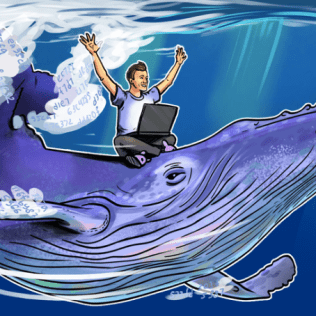 One Whale Was Behind Bitcoin's 2017 Bull Run, Claim Researchers