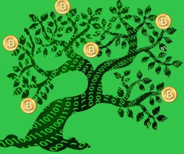 Bitcoins don't grow on trees