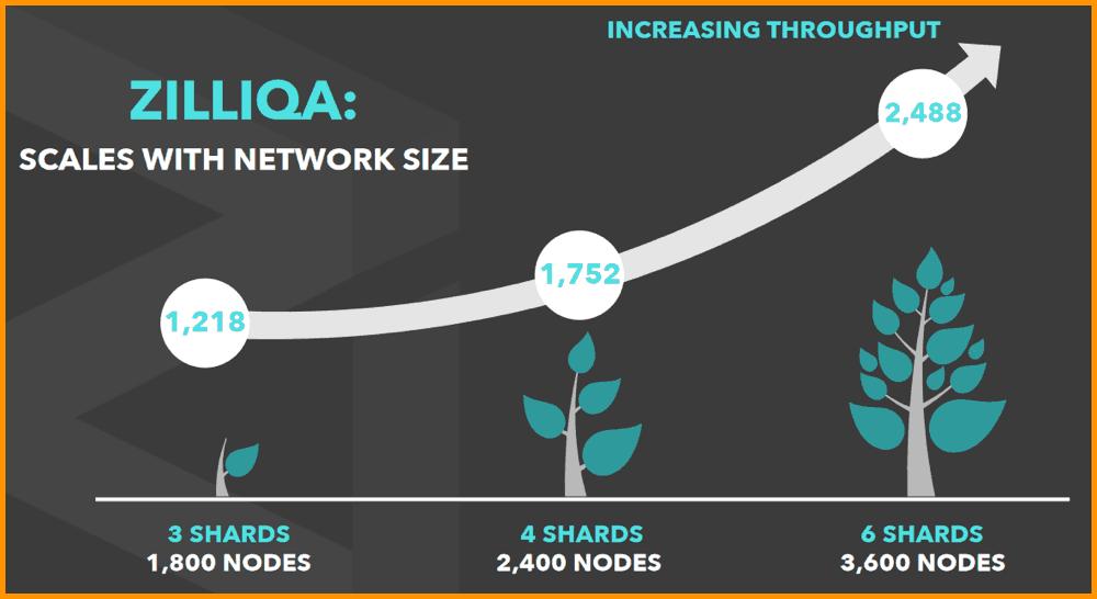 Zilliqa blockchain