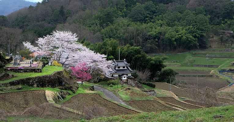 Morar no interior do Japão