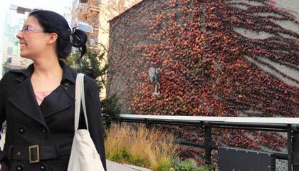 Coisa passeando pelo parque High Line em Nova York no final do outono com folhas em um muro ao fundo