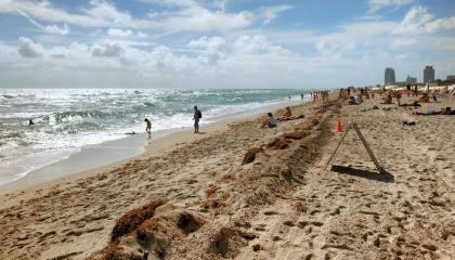 Motivos para entrar nos EUA por Miami: as praias da cidade têm fácil acesso e ótima estrutura