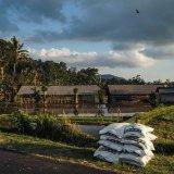 農業 肥料