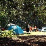 キャンプ初心者の家族はレンタルをオススメする3つの理由
